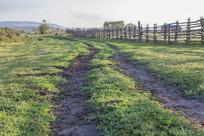草原上的车辙