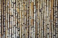 桦木杆装饰墙壁