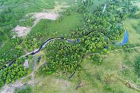 丛林小溪景观 航拍