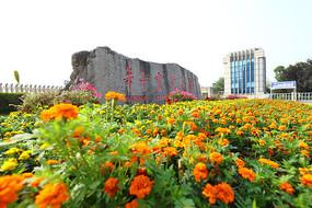 华中农业大学新校门