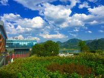 蓝天白云下的露台绿化