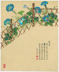 清 邹一桂花卉八开 紫喇叭图
