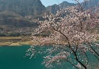 太行山水春天美景