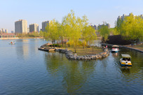 城市建设中的春天景色