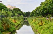 美丽的小河自然风景