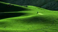 新疆喀拉峻草原牧马人