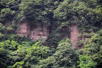 被植被覆盖的太行山山壁