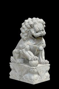 黑色背景石狮子