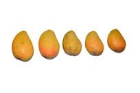 芒果高清图