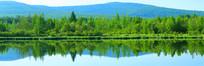 森林湖风光全景高清