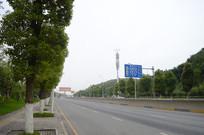 公路边的绿化树木
