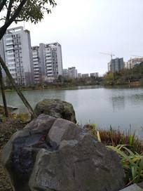 住宅区绿化