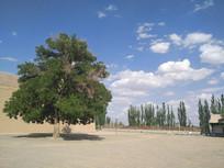云彩风景图片