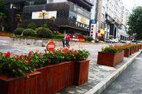 街边的花箱和花草提示牌
