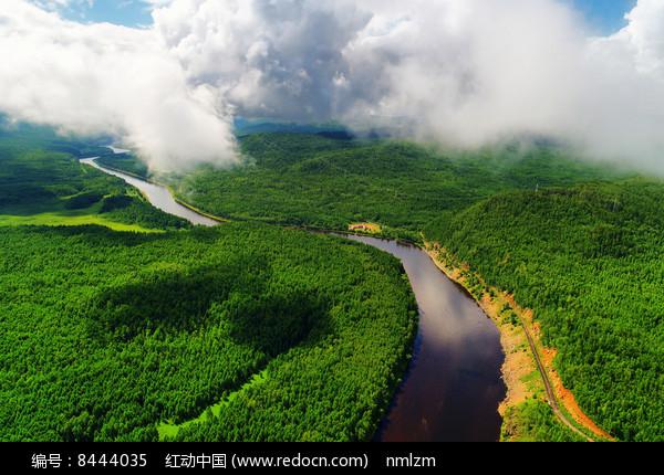 绿色林海激流河图片