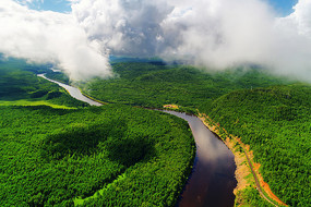绿色林海激流河