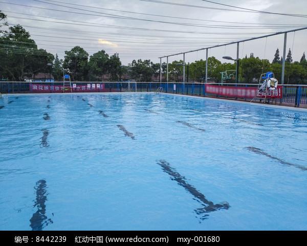 夏日游泳池图片