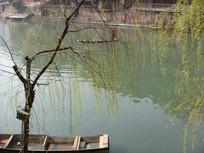 凤凰古城湖边风景