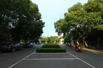 民族大学的绿道