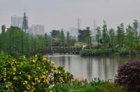 远处湖上的小木桥