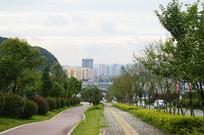 城市绿化和健康步道