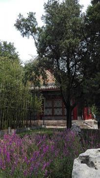 古代园林建筑