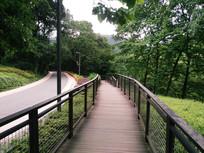 林间景观公路和木板路
