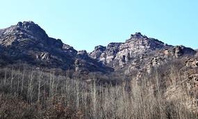 冬季的树林和大山