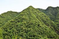 绿色山岭摄影图