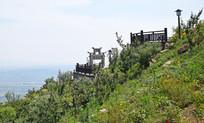 山坡上的观景平台