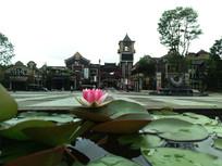 时光贵州景区门前的莲花