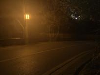 岳麓山景区的路灯