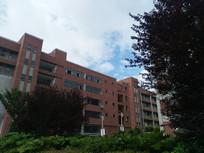 环境优雅的校园