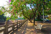 惠州西湖边的石凳