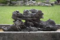 孔洞褶皱奇石