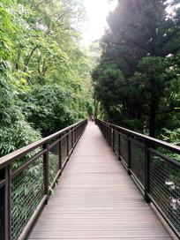 林间吊桥路面