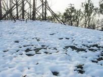草地积雪景观