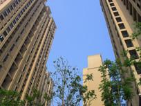 高楼建筑摄影