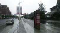雨后的金清大道风景