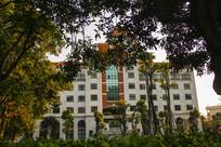 绿树掩映教学楼