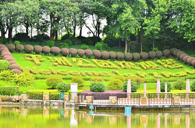 平洲公园风景
