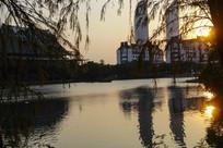 校园夕阳湖畔