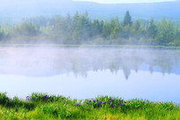 晨雾中的马兰湖风光