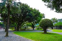 台北宾馆内的花园