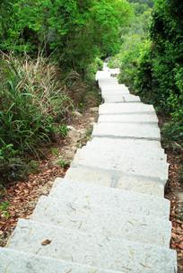 山上的石头阶梯