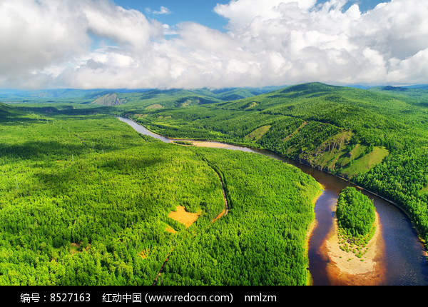 绿色林海激流河 (航拍) 图片