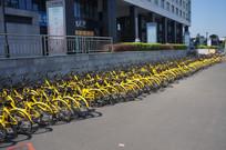 城市街头的共享单车