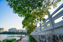 惠州南湖边的景色风光