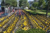 众多的共享单车