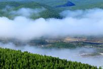 森林晨雾风景